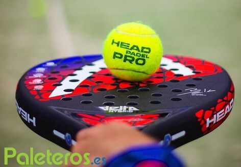 Bola HEAD Padel Pro